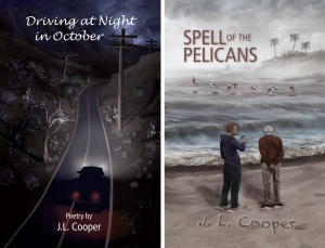 Driving-at-Night-in-October-Spell-of-the-Pelicans